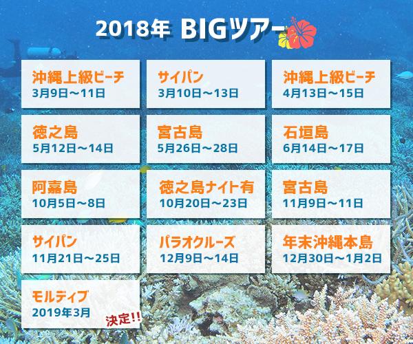 2018年BIGツアースケジュール