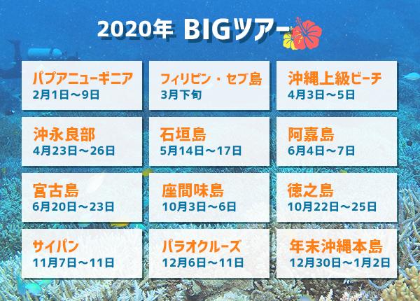2019年BIGツアースケジュール